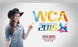 WCA2015世界总决赛