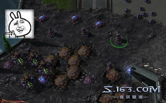 """星际2吊打电脑第一期:虫族宿主""""泉水沟""""战术"""