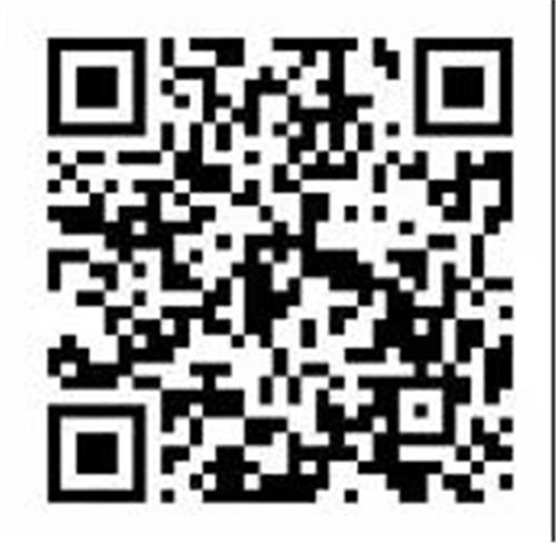 15311920525vG.jpg