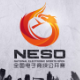 NESO2016首日比赛结束 各项目八强出炉