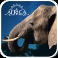 治愈大象育成3D