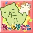 猫猫打砖块